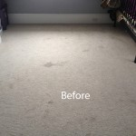 Bedroom-Wall-to-Wall-Carpet-Cleaning-Richmond-A