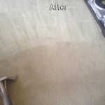 Richmond-Carpet-Cleaning-Company