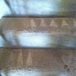 Richmond-Stairs-Carpet-Cleaning