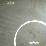 Richmond-Wine-Stain-Carpet-Cleaning
